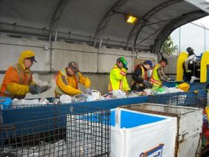 MR Recycling Depot - Plastics Sort Line